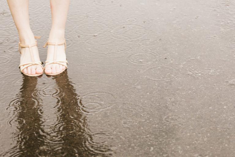 びしょ濡れ